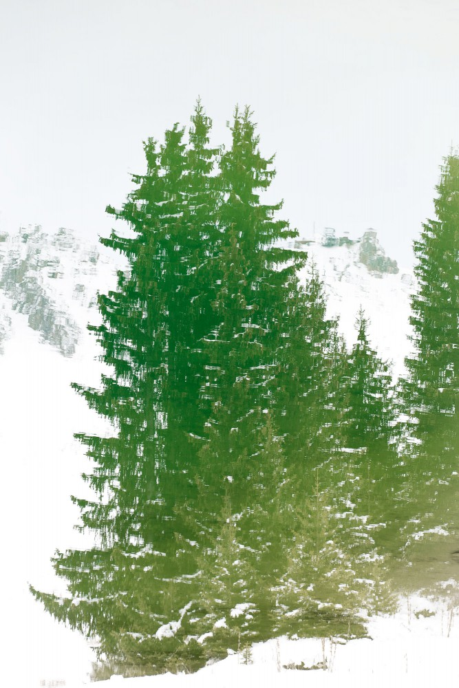 Reflection of trees. Courchevel, French Alps